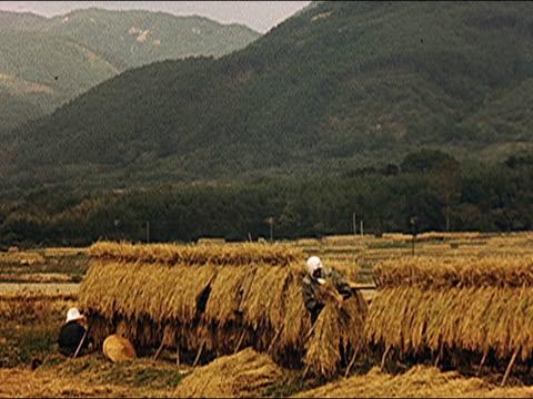 1953 japanese countryside, farming - farmer hay stock videos & royalty-free footage