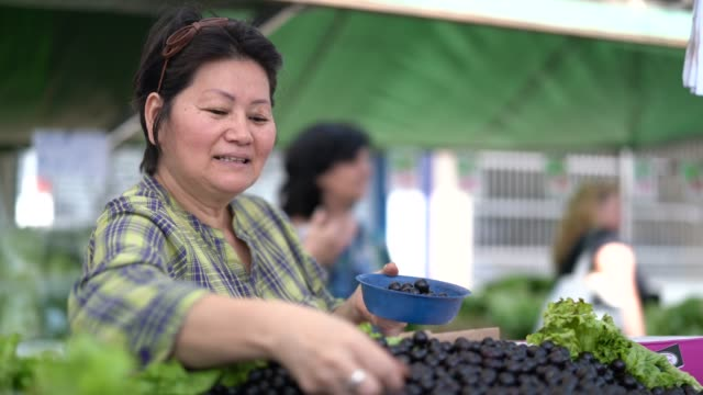 japanese ethnicity woman buying jabuticaba / jaboticaba on farmers market - antioxidant stock videos & royalty-free footage