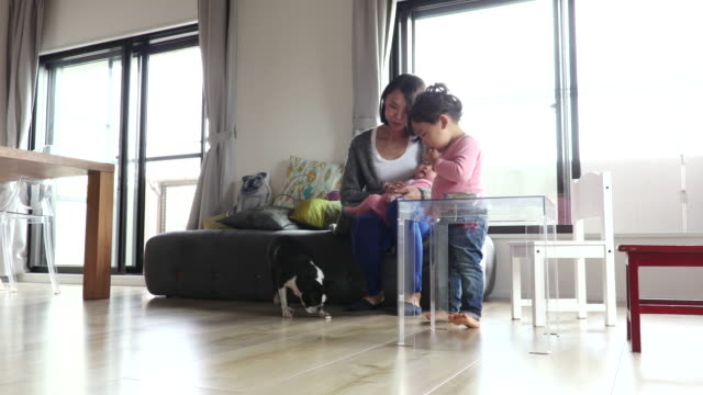 japanese family - 子供2人の家庭点の映像素材/bロール