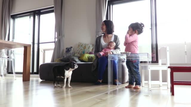 japanese family - simple living bildbanksvideor och videomaterial från bakom kulisserna