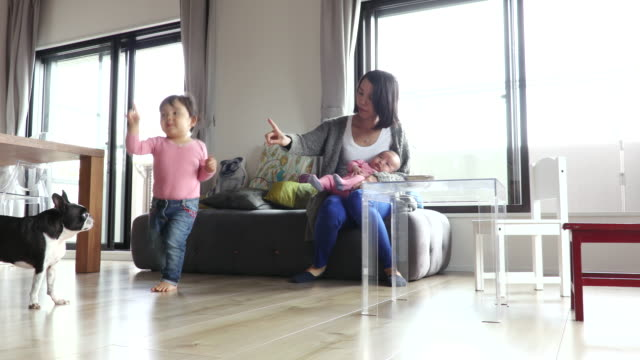 japanese family - 居間点の映像素材/bロール