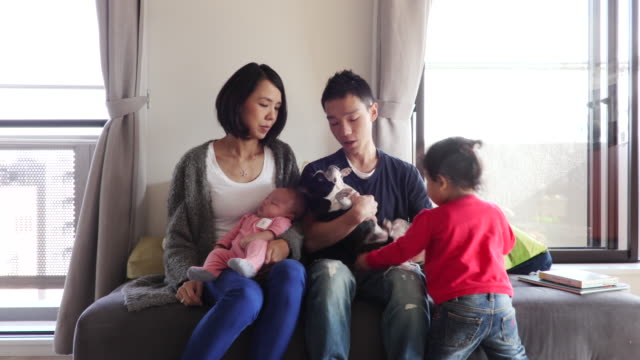 japanese family - cardigan sweater stock videos & royalty-free footage