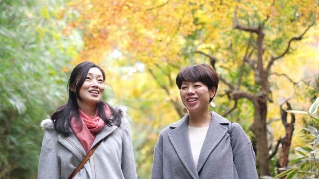 vídeos y material grabado en eventos de stock de amigas japonesas caminando bajo el bosque de otoño - 40 44 años