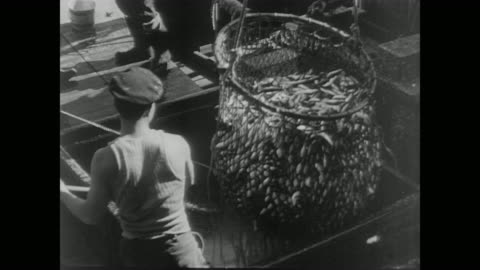 vídeos y material grabado en eventos de stock de japanese fisherman cast nets and gather fish on fishing boat in the us during wwii - barco pesquero