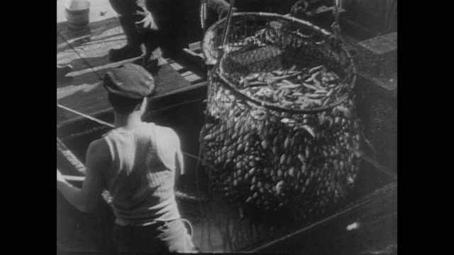 vídeos de stock e filmes b-roll de japanese fisherman cast nets and gather fish on fishing boat in the us during wwii - navio pesqueiro
