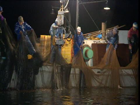 vídeos de stock, filmes e b-roll de japanese fishermen haul in catch of firefly squid, japan - calamar