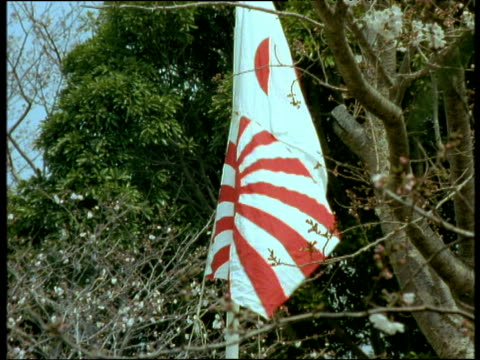 japanese flag being raised against trees in blossom - japan flag stock videos & royalty-free footage