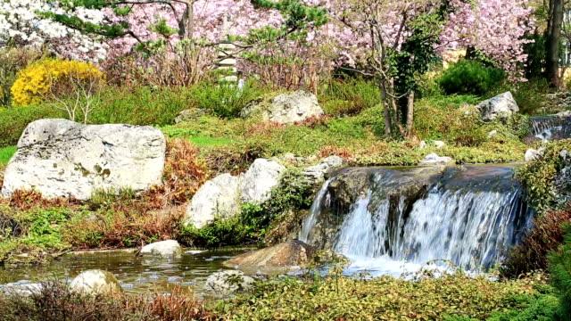 日本庭園の春 - 小川点の映像素材/bロール