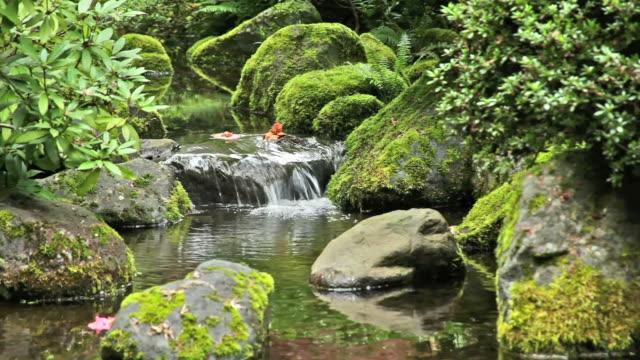 Jardin japonais Stream