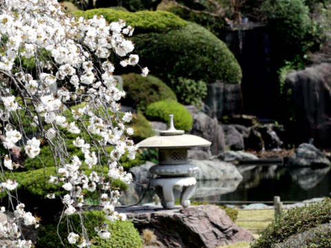pal: japanese garden (video) - oriental garden stock videos and b-roll footage