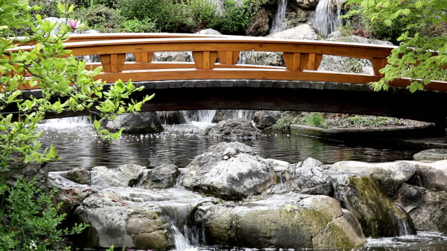 japanese garden with bridge - oriental garden stock videos and b-roll footage