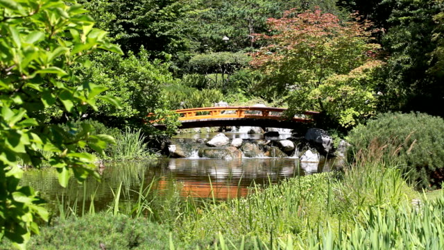japanese garden with pond and bridge