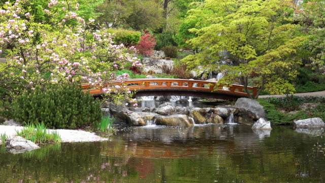 japanese garden with super-zoom-in-effect - oriental garden stock videos and b-roll footage