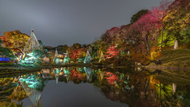 japanese gardens tree reflect off pond at night, timelapse - satoyama scenery stock videos and b-roll footage