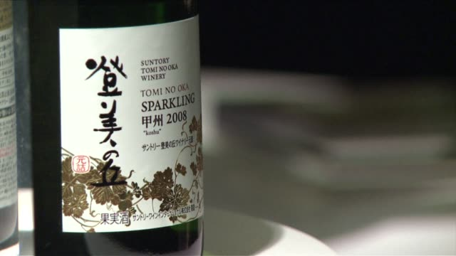 a japanese grape grown on the foothills of mount fuji is producing wine thats even impressing french connoisseurs and the winemakers are now looking... - foothills stock videos & royalty-free footage