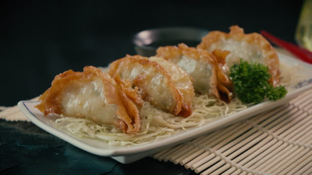 japanese gyoza on plate - porcelain stock videos & royalty-free footage