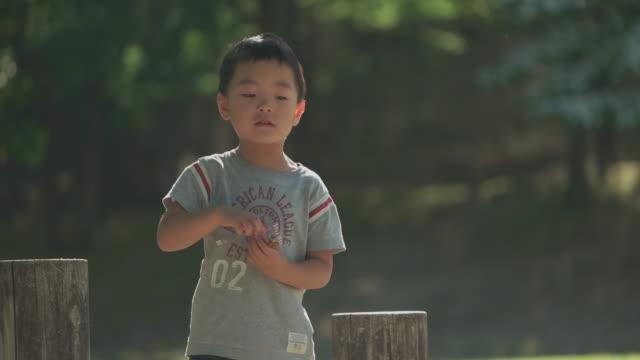 japanese kids having fun in the park. - tシャツ点の映像素材/bロール