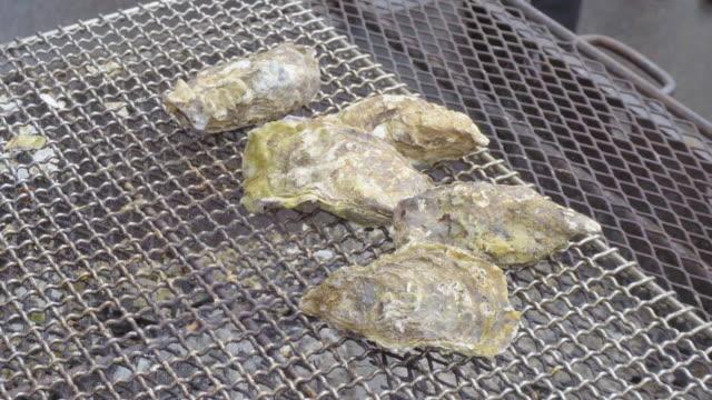 vídeos de stock, filmes e b-roll de japanese oyster - bbq sauce