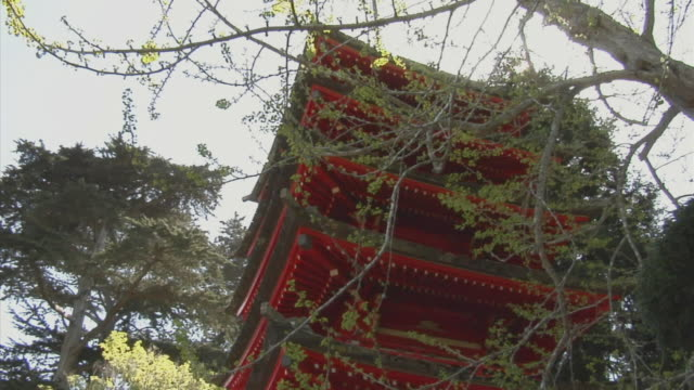 MS, TD, Japanese pagoda in park, San Francisco, California, USA