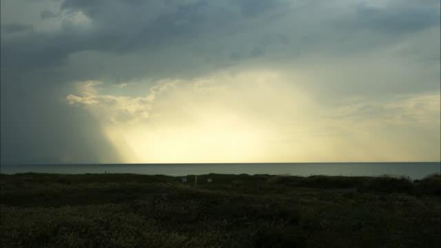 vidéos et rushes de japanese pampas grass gregariousness wide  sea  sunlight from rift between clouds - phénomène naturel