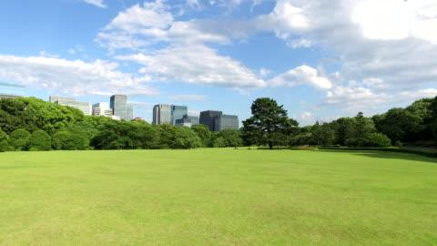 東京で日本の公園 - grass点の映像素材/bロール