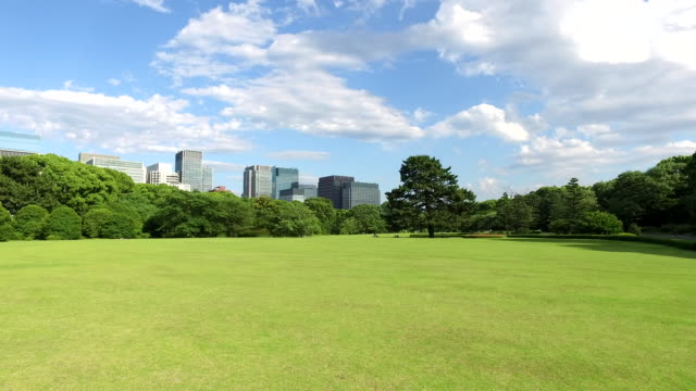 japanese park in tokyo - natural parkland stock videos & royalty-free footage