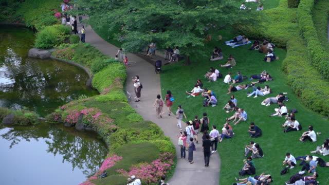 週末の芝生の上で公園でくつろぐ日本人 - public park点の映像素材/bロール