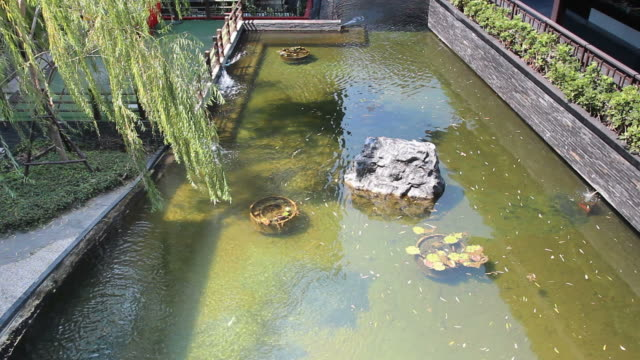 japanese pond in garden - shrine stock videos & royalty-free footage