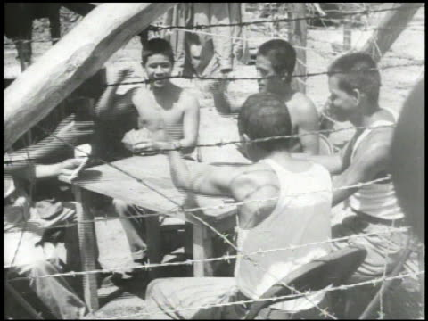 japanese prisoners of war in camp, playing card game, playing makeshift banjo, new pows registering, bowing to u.s. officers. wwii, world war ii,... - pacific war video stock e b–roll