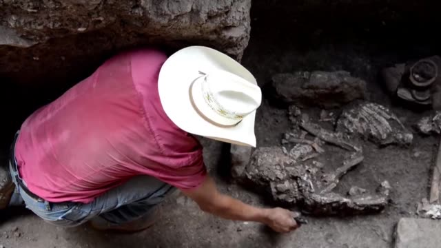 japanese scientists in honduras say they have found clues in a mayan tomb belonging to a royal family that shed new light on a pre hispanic custom of... - mayan stock videos & royalty-free footage