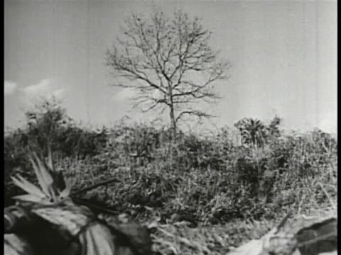 japanese soldiers firing artillery, group lobbing hand grenades, explosion behind hill. imperial flag of japan fg w/ bi-plane in sky bg. hand-held:... - japan flag stock videos & royalty-free footage