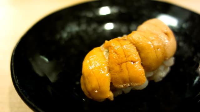 vídeos de stock e filmes b-roll de ouriço-do-mar sushi japonês. - sashimi