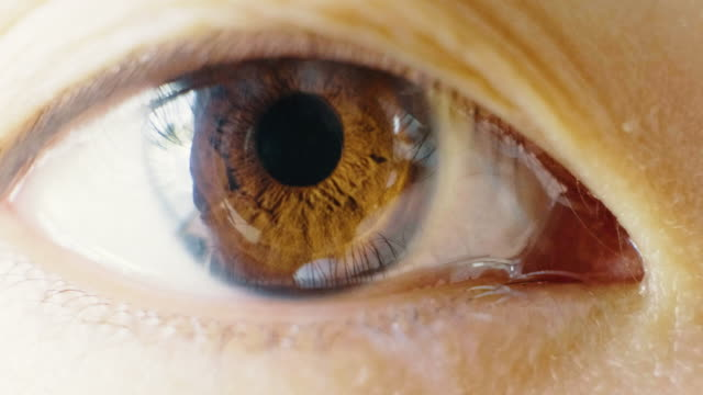 japanese woman brown eye - eyeball stock videos and b-roll footage