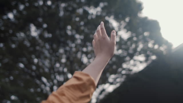 vidéos et rushes de japanese woman feeling sun with her hand below trees in tokyo, japan. - rêvasser