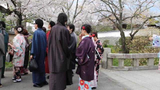vídeos de stock e filmes b-roll de japanese women in traditional attire walking down a concrete path at a city garden in kyoto - prunus taihaku
