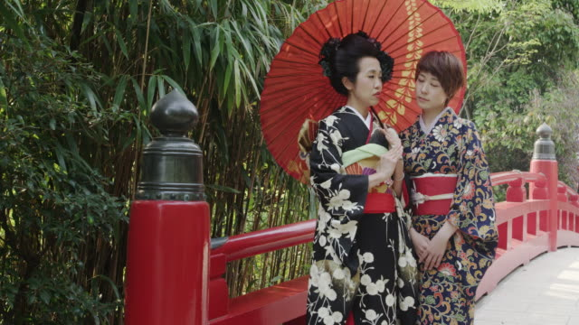 2 japanese women in traditional kimono - floral pattern stock videos and b-roll footage