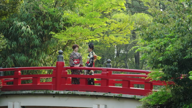 2 japanese women on a traditional japanese bridge - oriental garden stock videos and b-roll footage