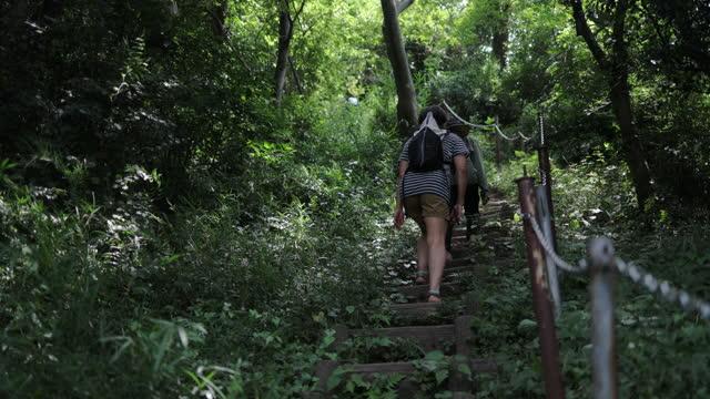 山の階段を上る華や草のサンダルを履いた日本人女性 - 神奈川県点の映像素材/bロール
