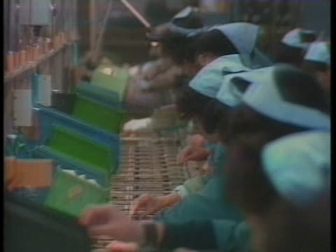 japanese workers assemble computers. - business or economy or employment and labor or financial market or finance or agriculture点の映像素材/bロール