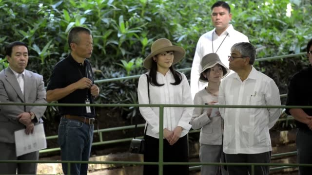 japans princess mako granddaughter of emperor akihito visited the archaeological site of joya de ceren in san juan opico el salvador during an... - emperor akihito stock videos and b-roll footage