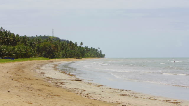 japaratinga beach in alagoas, pernambuco - northeastern brazil stock videos and b-roll footage