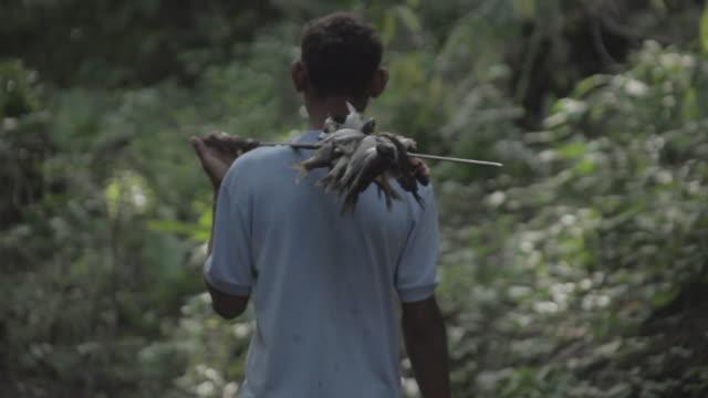vídeos y material grabado en eventos de stock de japrería natives in venezuela - un solo hombre