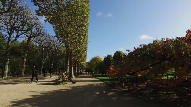 vídeos y material grabado en eventos de stock de jardin des plantes in paris in autumn - perspectiva de alguien andando