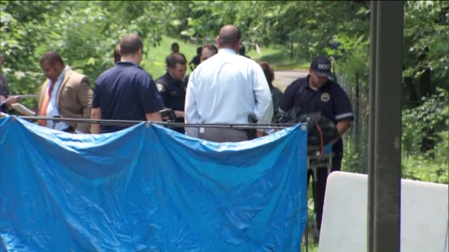jasmine gonzalez of the bronx, was discovered unconscious and unresponsive with multiple stab wounds to the torso on july 06, 2015 in bronx, new york. - torso video stock e b–roll