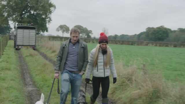 jason and laura kenny walking their dogs - husband stock videos & royalty-free footage