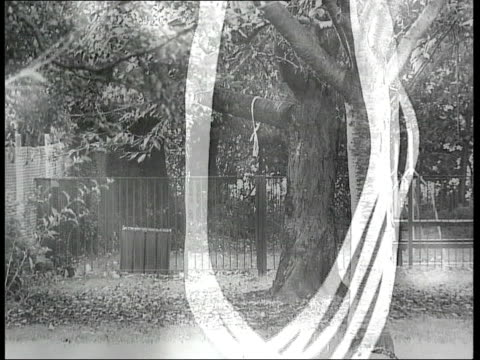 Father speaks out ITN Grainy picture Akohfa Hodasi EXT B/W TRACK Noose on tree branch B/W LS Noose on tree B/W Sign for Surrey Heath Borough Council...
