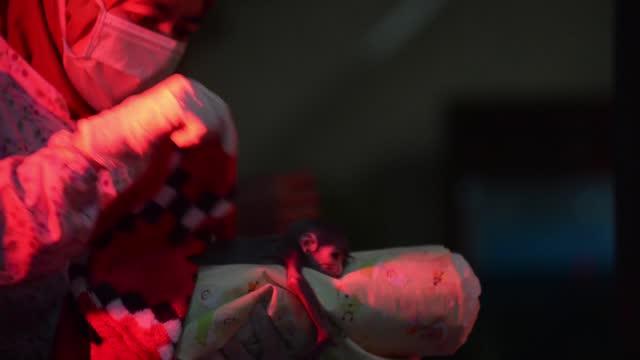 javanese owa jawa or javan gibbon is seen at the javan gibbon rehabilitation center, gunung gede pangrango national park, bedogol, sukabumi, west... - jolly video stock e b–roll