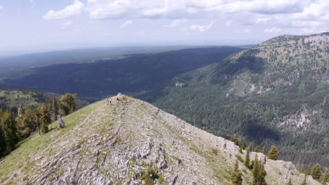 jedidiah smith wilderness aerial - wyoming stock videos & royalty-free footage