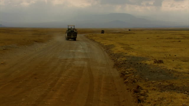 jeep in safari trip 3 - 4x4 stock videos and b-roll footage