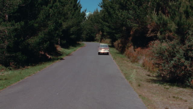 a jeep wagoneer travels on a country road. - evergreen tree stock videos & royalty-free footage